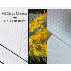 Kit básico Curso Mimosa